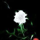 O Holy Night: Crystal Light: by Cherubtree