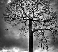 Tree against a dark moody sky by Carlos Restrepo