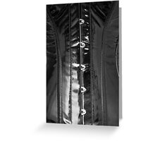 Shiny PVC corset... Greeting Card