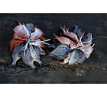 Something fishy going on......... Photographic Print