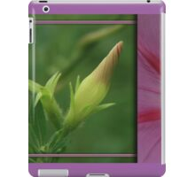 Morning Glory Diptych... South Africa, Free State iPad Case/Skin