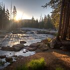 Morning at Lyell Fork by SometimesSilent