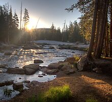 Yosemite: Tuolumne Meadows & Backcountry Wall Calendar by Eileen Ringwald
