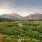 Sun dappled mountain landscape by SometimesSilent