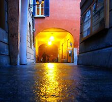 Reggio-Emilia. A Street View at Night. Italy 2009 by Igor Pozdnyakov