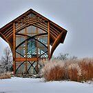 Winter Shrine by Tim Wright
