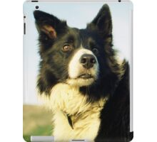 A portrait of Indy iPad Case/Skin