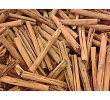 Cinnamon  Photographic Print