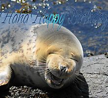 Seal Birthday Card With Laughing Seal by Moonlake