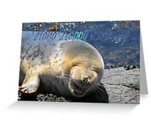 Seal Birthday Card With Laughing Seal Greeting Card