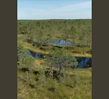 a beautiful Estonia landscape Unisex T-Shirt