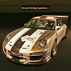 Porsche Racing by LarryH