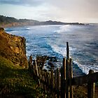 The Sea Ranch, CA by Jon Yager
