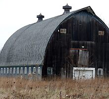 Grand Blanc Twp Barn 2 by Jellybean720