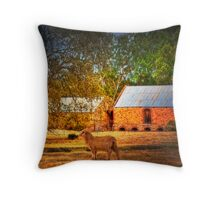 The Farm - Mount Barker, Adelaide Hills, South Australia Throw Pillow