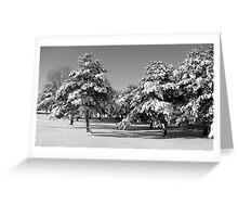 snow.  Greeting Card
