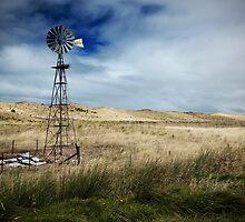 Kingston Farm by Darryl Leach