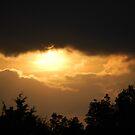 Stormy Night by Debbi Tannock