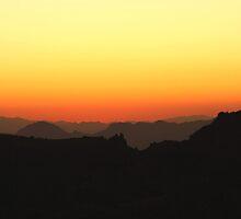 Tucson, Arizona by Judi FitzPatrick