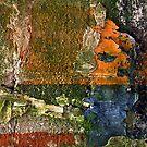 Plaster Precipice by Scott  Richey