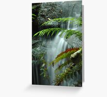Layers of Water - Blue Mountains,NSW Greeting Card
