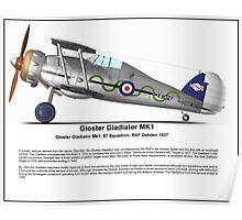 Gloster Gladiator MK1 Profile Poster