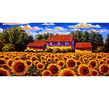 Home in the Sunflower Field Photographic Print