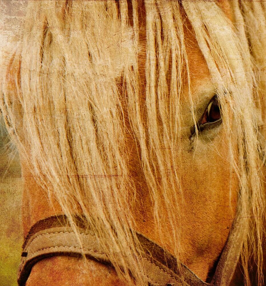 Golden Horse by Kasia Fiszer