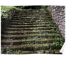 The Chillingham Steps Poster