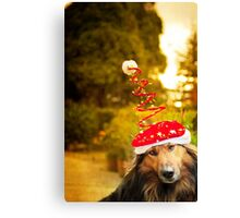 Merry DOG christmas Canvas Print