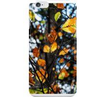 Slovenia colors iPhone Case/Skin