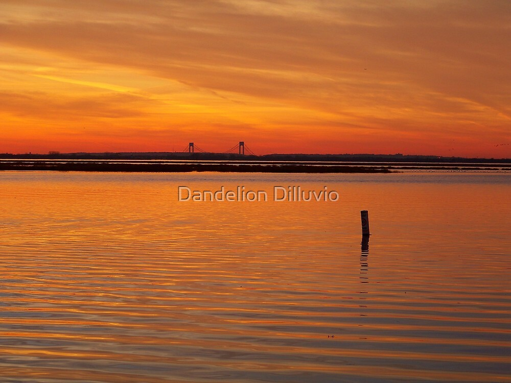 Colors of Jamaica Bay by Dandelion Dilluvio