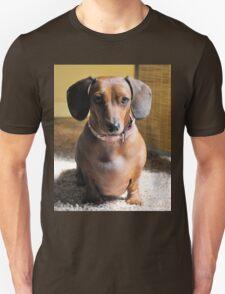 Dachsie T-Shirt