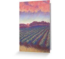 Vineyard Sunset Greeting Card