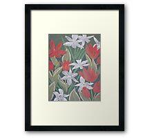 Burst of Spring Color Framed Print