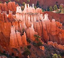 Morning in Bryce Canyon by Valentina Gatewood