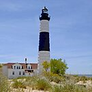 Big Sable Point by Lin Taylor
