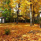 Autumn Lawn by nikspix