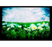 Dreaming of Spring Photographic Print