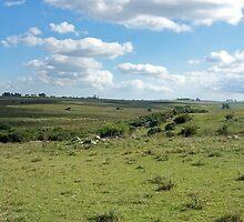 an unbelievable Uruguay landscape by beautifulscenes