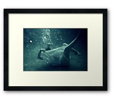 Great White Bear Framed Print