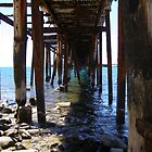 &#x27;Just hangin in there!&#x27; Old rotting Jetty. South Australia. by Rita Blom