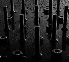 Nuts And Bolts by rudolfh