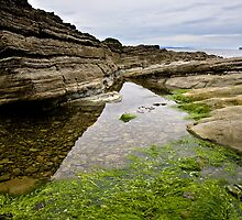 Reflecting the Tide by James Lyall