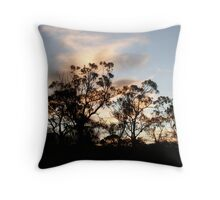 Sunrise in the trees on the Glebe Throw Pillow