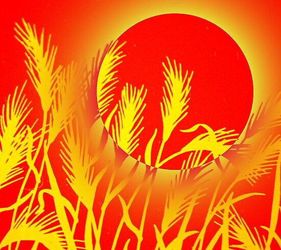 Sun Wheat by Juana Maria Garcia Domenech