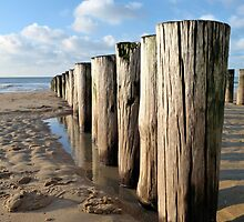 BREAKWATER  POLE STRUCTURE by Johan  Nijenhuis