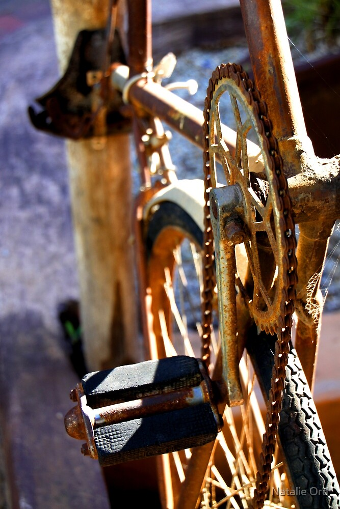 Mulga Bill's Bicycle by Natalie Ord
