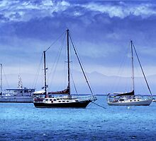 Safe Harbor by Holly Kempe