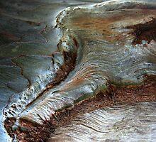 Silver Wrinkles by Haydee  Yordan